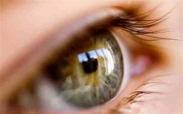 vision eye see