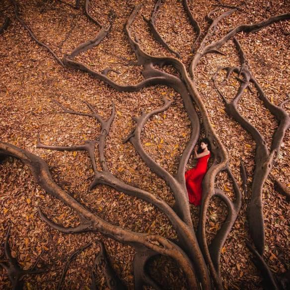 roots secret rest soul