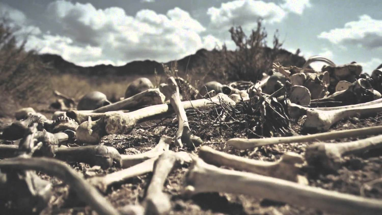 valley dry bones