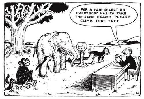 education test different animals cartoon