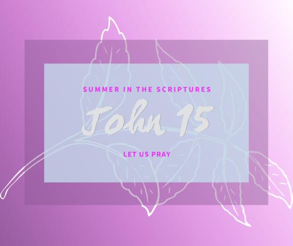 Summer in the Scriptures John (13)