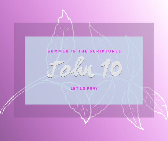 Summer in the Scriptures John (8)