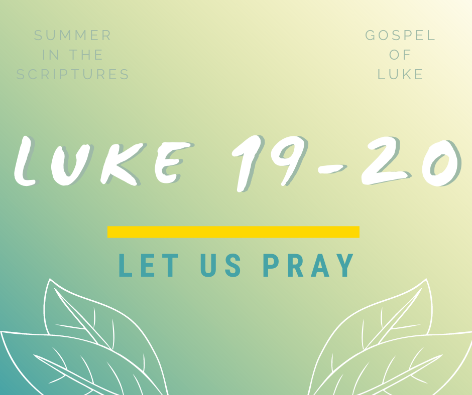 summer in the scriptures luke (16)