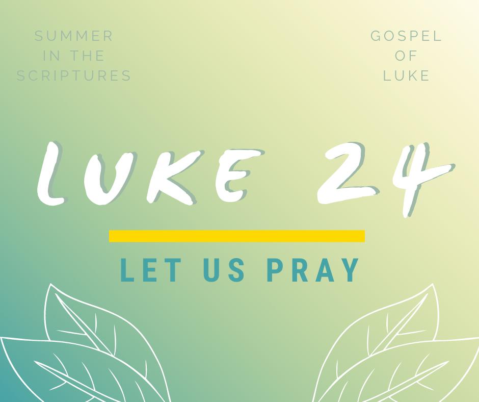 summer in the scriptures luke (5)